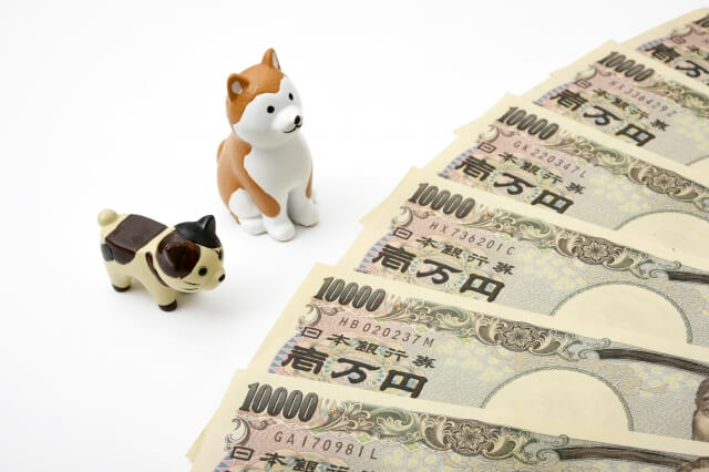 犬保険お金